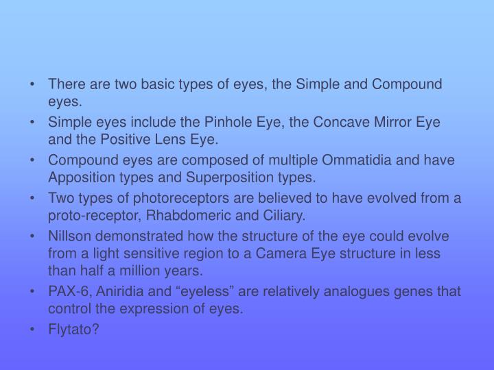 There are two basic types of eyes, the Simple and Compound eyes.