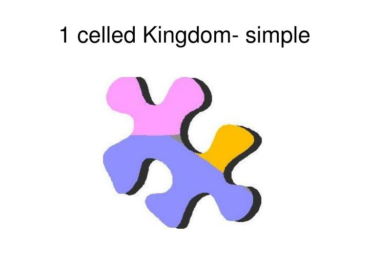 1 celled Kingdom- simple