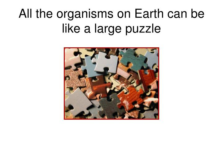 All the organisms on Earth can be like a large puzzle