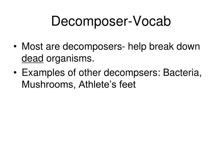Decomposer-Vocab