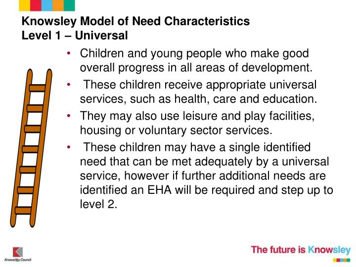 Knowsley Model of Need Characteristics
