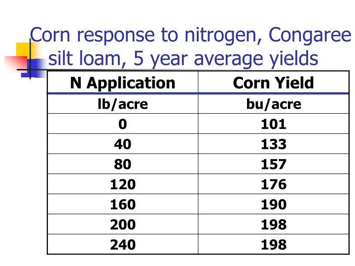 Corn response to nitrogen, Congaree