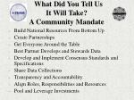 what did you tell us it will take a community mandate