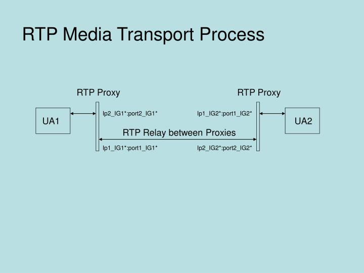 RTP Media Transport Process