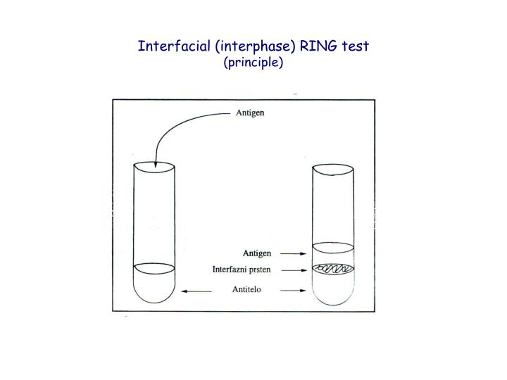 Interfacial (interphase) RING test