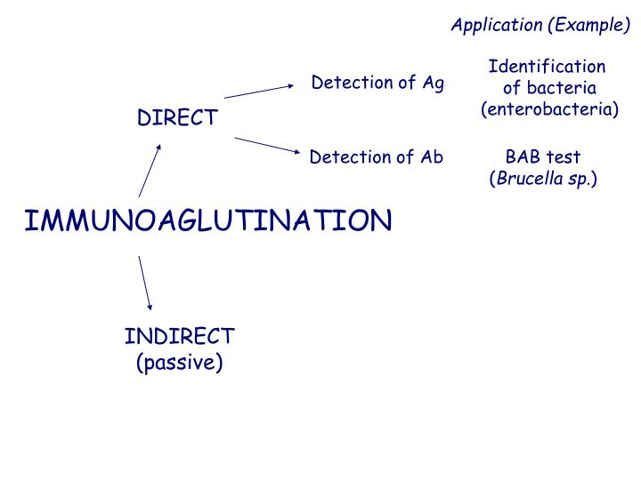 Detection of Ab