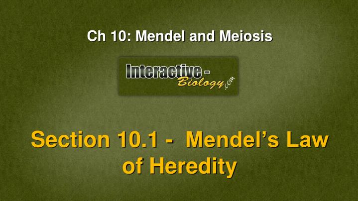 Section 10.1 -  Mendel's Law of Heredity