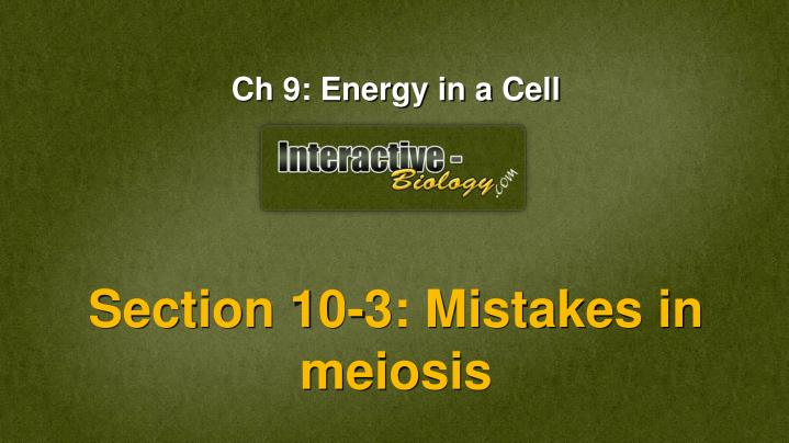 Section 10-3: Mistakes in meiosis