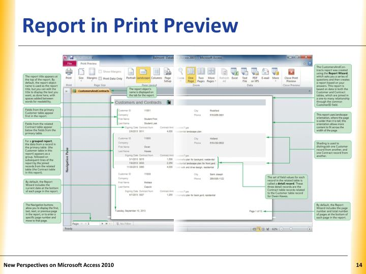 Report in Print Preview