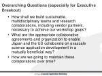 overarching questions especially for executive breakout