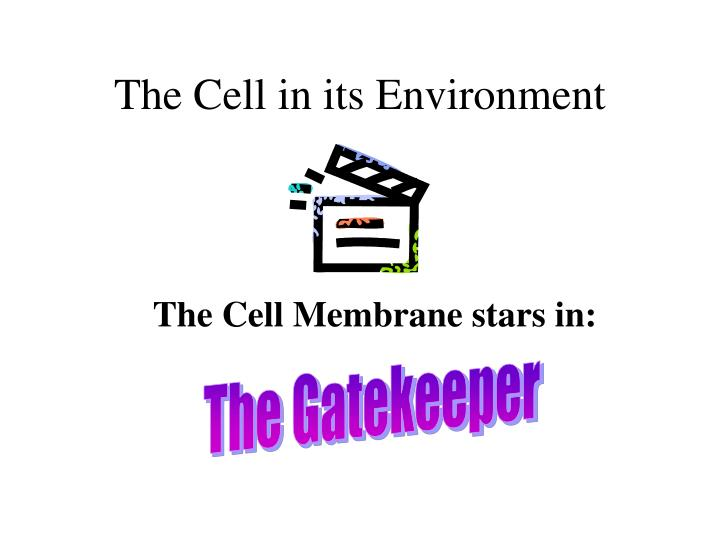 The cell in its environment