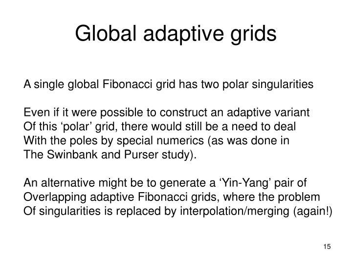 Global adaptive grids
