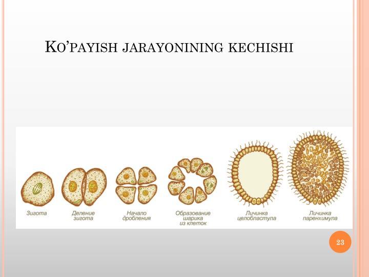 Ko'payish
