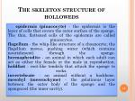 the skeleton structure of holloweds