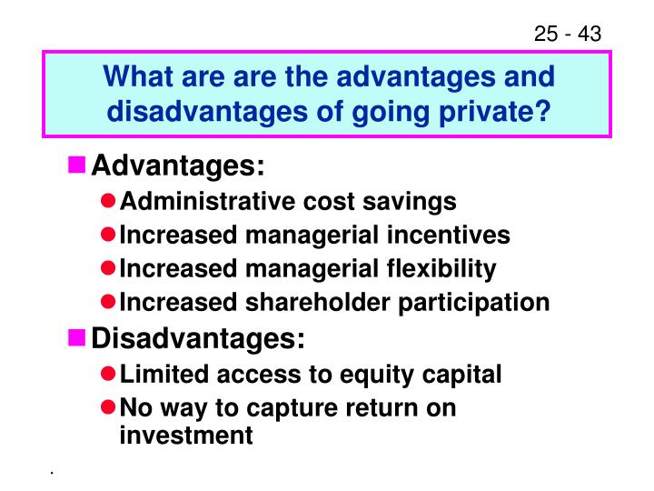 What are are the advantages and disadvantages of going private?