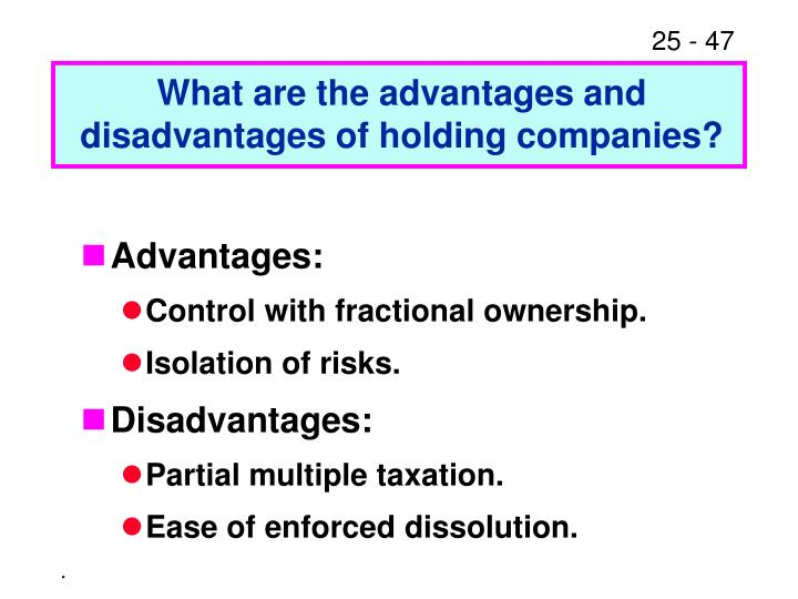 What are the advantages and disadvantages of holding companies?
