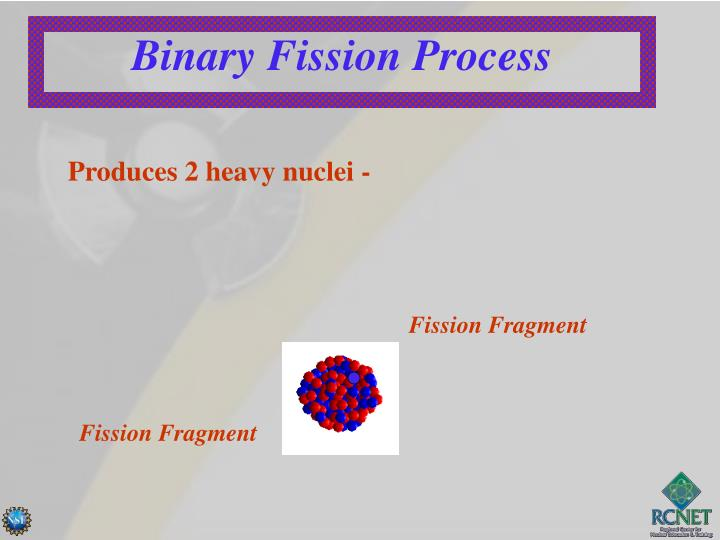 Binary Fission Process