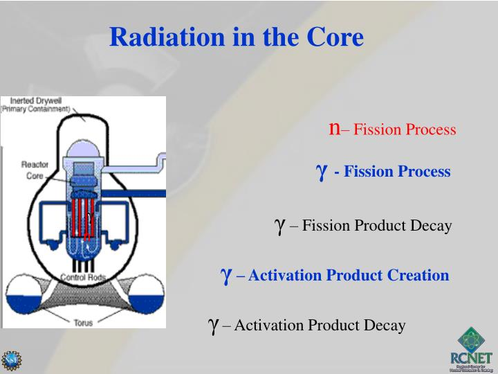 Radiation in the Core