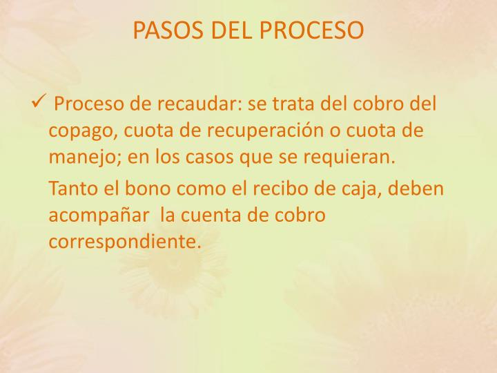 PASOS DEL PROCESO