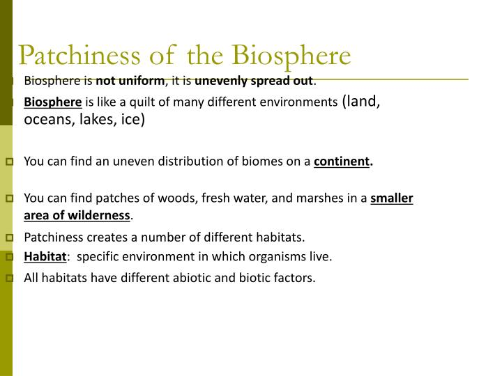 Patchiness of the Biosphere