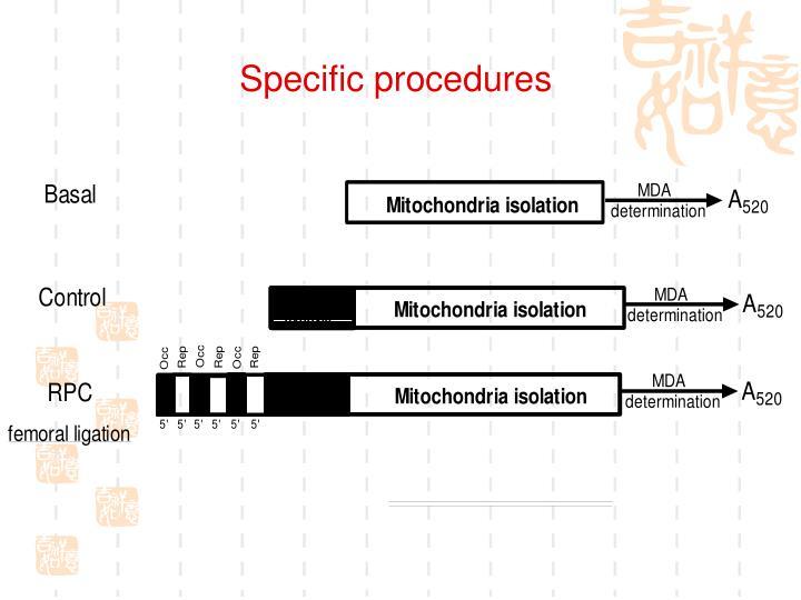 Specific procedures