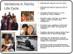 variations in family life cycle
