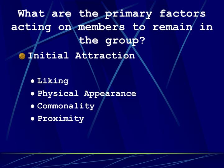What are the primary factors acting on members to remain in the group?