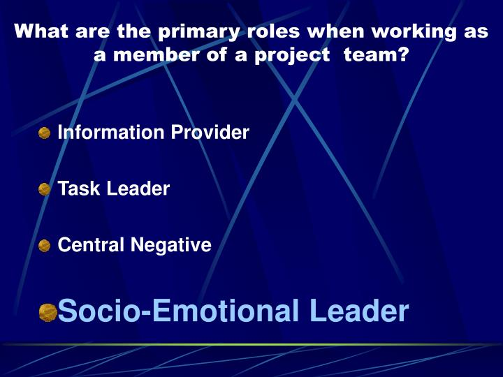What are the primary roles when working as a member of a project  team?