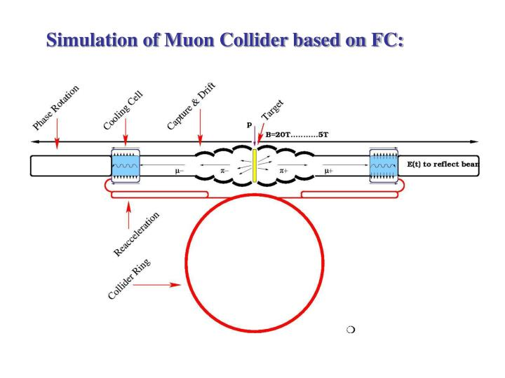 Simulation of Muon Collider based on FC: