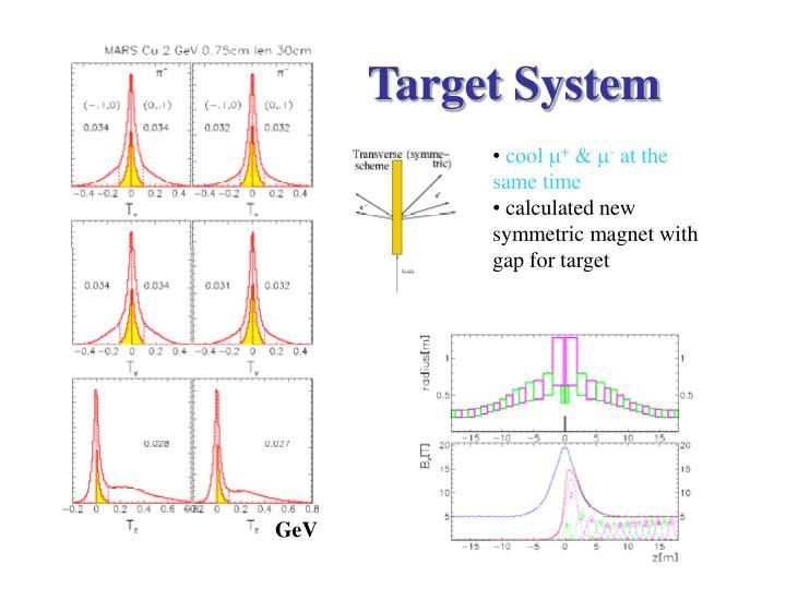 Target System
