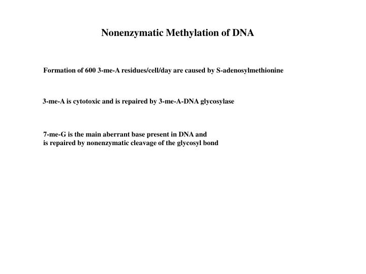 Nonenzymatic Methylation of DNA