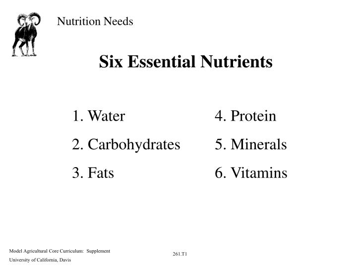 PPT - Six Essential Nutrients PowerPoint Presentation - ID:6015419