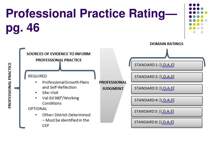 Professional Practice Rating—pg. 46