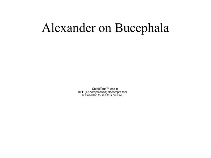 Alexander on Bucephala
