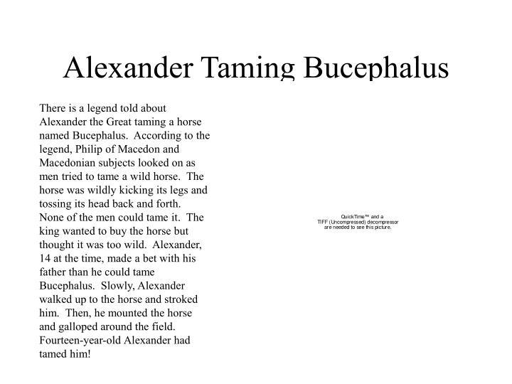 Alexander Taming Bucephalus