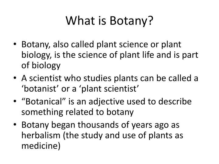 botany themes for presentation