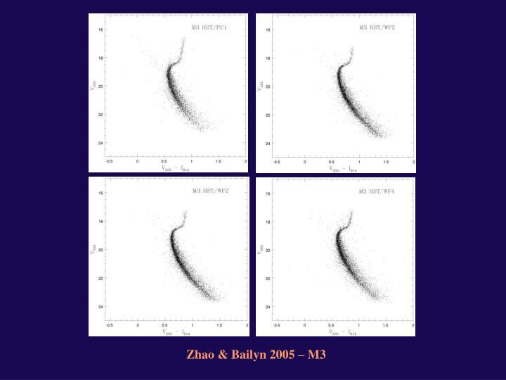 Zhao & Bailyn 2005 – M3