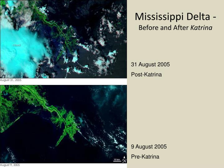 Mississippi Delta -