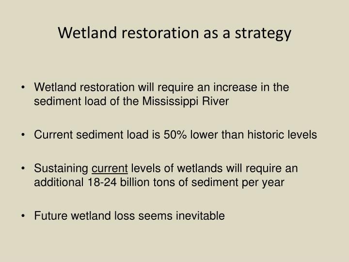 Wetland restoration as a strategy