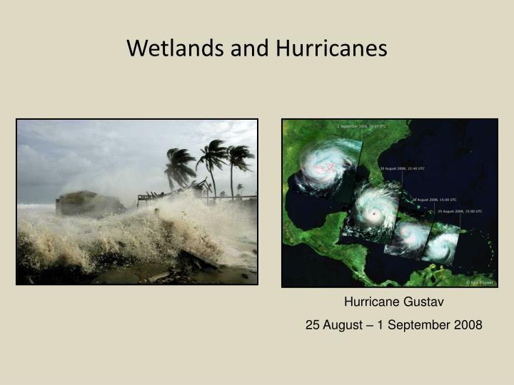 Wetlands and Hurricanes
