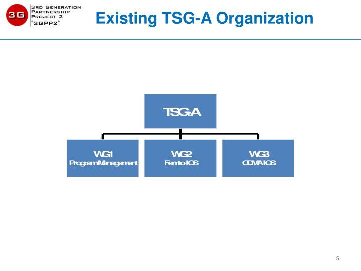 Existing TSG-A Organization