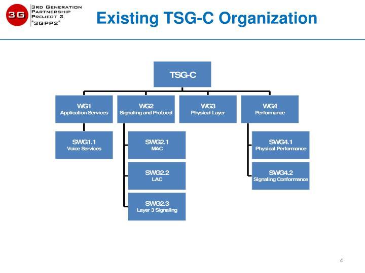 Existing TSG-C Organization