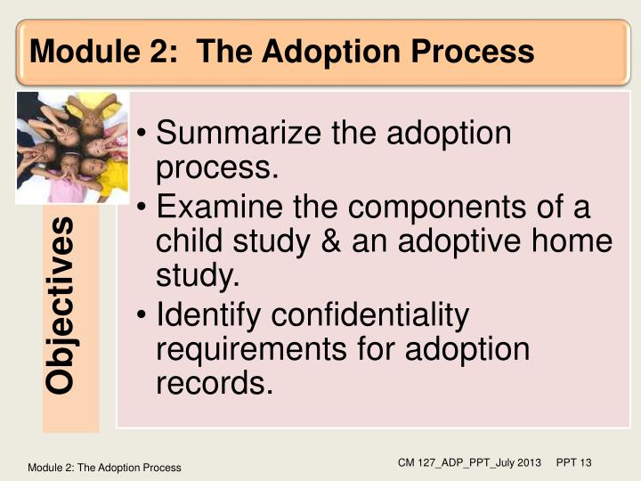 Module 2: The Adoption Process