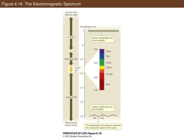 Figure 6.16  The Electromagnetic Spectrum