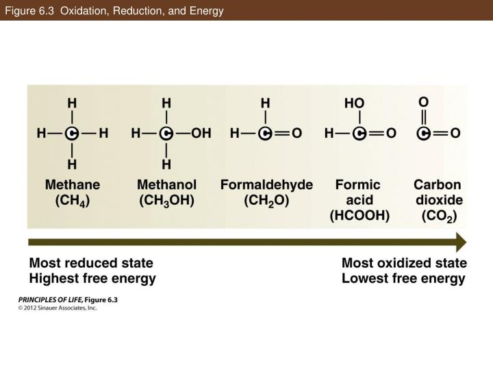 Figure 6.3  Oxidation, Reduction, and Energy
