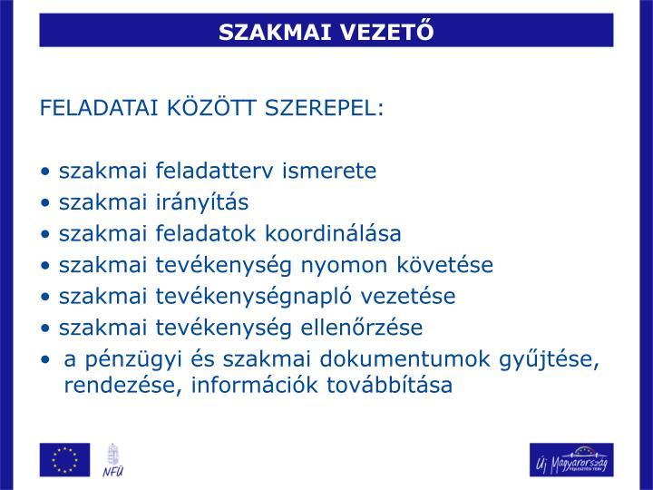 SZAKMAI VEZETŐ