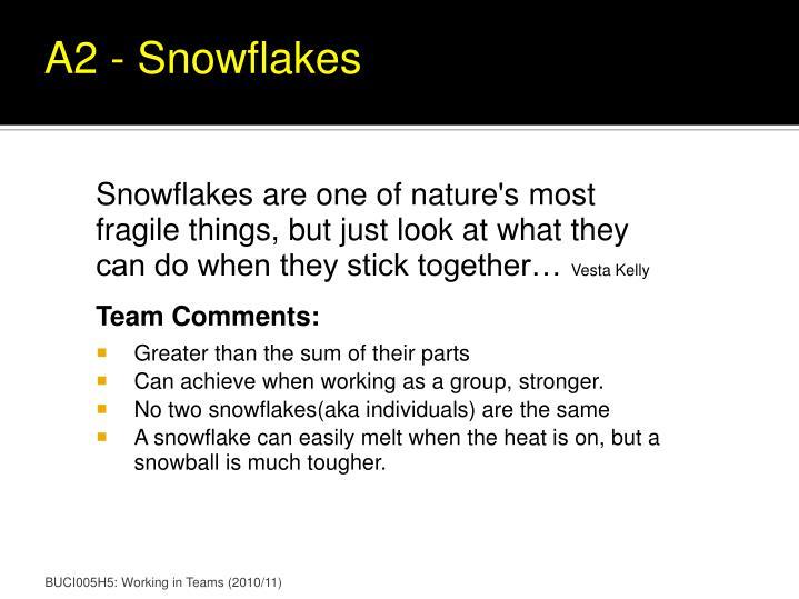 A2 - Snowflakes