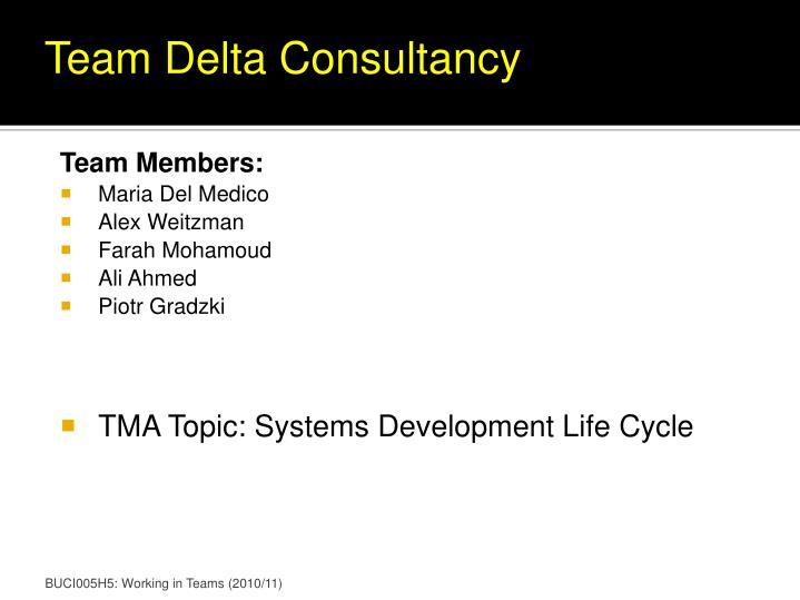 Team Delta Consultancy