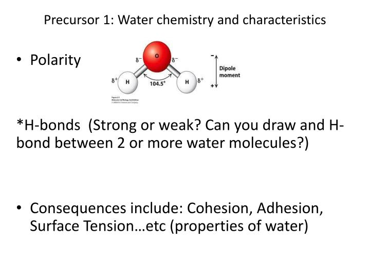 Precursor 1: Water chemistry and characteristics