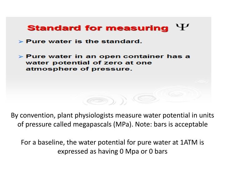 By convention, plant physiologists measure water potential in units of pressure called megapascals (MPa). Note: bars is acceptable